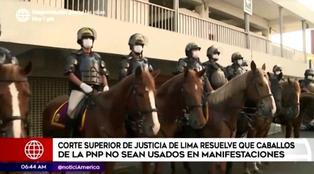 Sentencia prohíbe que caballos de la PNP participen en manifestaciones