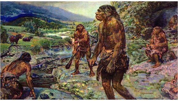 Los neandertales se extinguieron por estrés ante la llegada del Homo sapiens