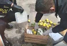 Hermanas tratan de llevar droga camuflándola en cajones de maracuyá (VIDEO)