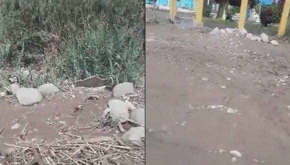 40 corderos y vacas son salvadas de ser arrasadas por río camino a Mirave (VIDEO)