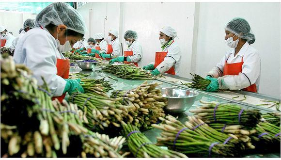 Agroindustria favoreció el progreso social de las mujeres en la región Ica