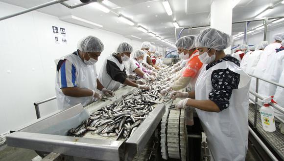 La entidad anunció que esta primera temporada de pesca de anchoveta (Engraulis ringens) y anchoveta blanca (Anchoa nasus) culminará el próximo 15 de agosto, según la Resolución Ministerial 263-2020-Produce. (Foto: GEC)