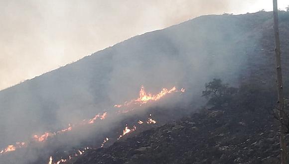 Centro de Operaciones de Emergencia Nacional reportó que se han dañado más de 130 hectáreas de cobertura natural.