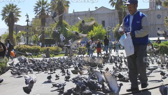 Luis Neyra, especialista en Microbiología y Parasitología, explica que hay que tener mucho cuidado el hongo criptococosis, porque se contagia simplemente por inhalación, ya que está presente en las heces de las aves de zonas urbanas y rurales. (Foto: Correo)