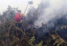 Reportan que incendio forestal en santuario de Machu Picchu fue controlado (FOTOS)