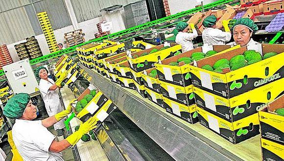 Estados Unidos demandó frutas por US$ 681 millones, un aumento en sus pedidos del 14% y una participación del 29%. (Foto: GEC)
