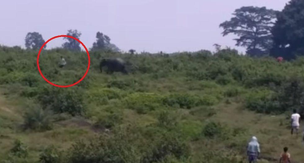 YouTube: quiso tomarse un selfie con un elefante, se acercó demasiado y murió pisoteado (VIDEO)