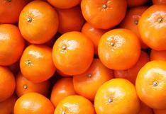 Senasa confirma que la región Ica exporto 109 mil toneladas de cítricos