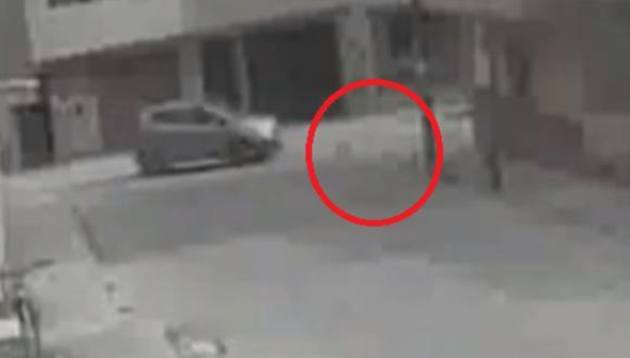 Hombre arrolla perros solo para vengarse de su vecina