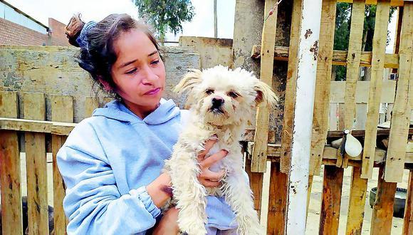 Cristóbal: el perrito que fue abandonado tras la muerte de su amo por COVID-19 en Huancayo