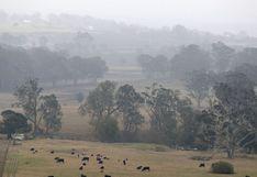 Australia: lluvias dan una mano a los bomberos que enfrentan incendios forestales