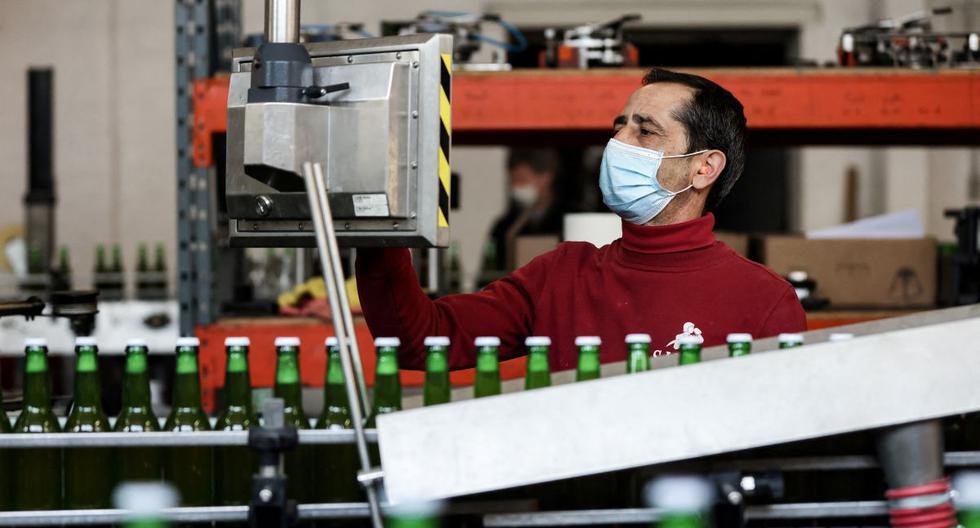 Un técnico revisa botellas en una línea de producción en la cervecería Silly el 28 de abril de 2021 en Silly. (Kenzo TRIBOUILLARD / AFP).