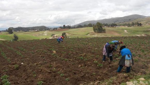 Ministerio de Agricultura ratifica construcción de represa Paltuture