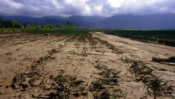 Las migraciones por el cambio climático ya comenzaron