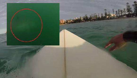 Terrorífico momento pasa surfista al encontrarse un tiburón blanco