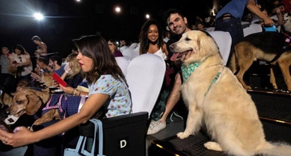 Un cine abrió sus puertas a 180 perros para presenciar un preestreno junto a sus dueños