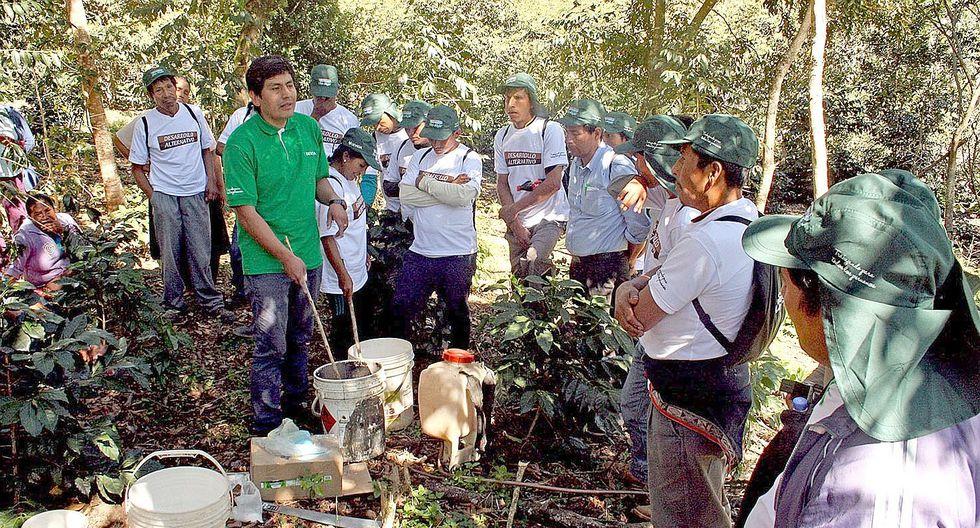 Cafetaleros de Cusco exportan productos hacia Estados Unidos y Alemania