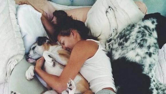 Estudio revela que las mujeres prefieren dormir con su perro que con sus parejas