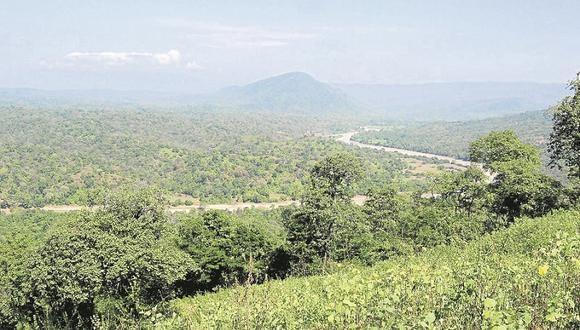 Recortarán área de los Cerros de Amotape