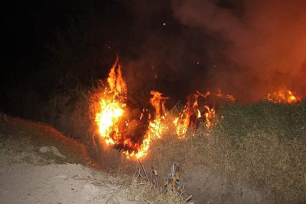 Nasca: incendio forestal en Vista Alegre